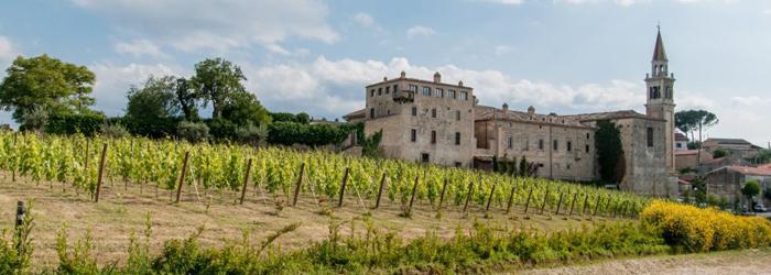 Castello-di-Semivicoli---Casacanditella-(Ch).jpg